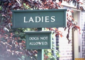 """Dogs Not Allowed"" - we assume this means the animal variety"